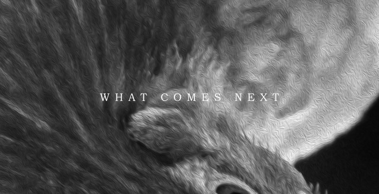 vc-album-what-comes-next-x